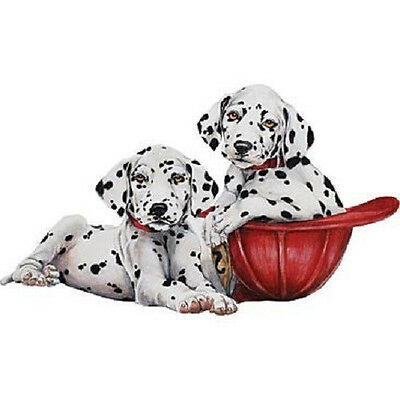 Dalmatians Puppy T-Shirt All Sizes And Colors (207)