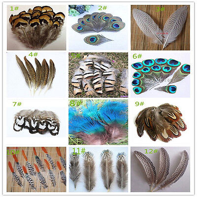 Wholesale10-100PCS beautiful 2-20cm/2-10inches Pheasant tail & Peacock feathers