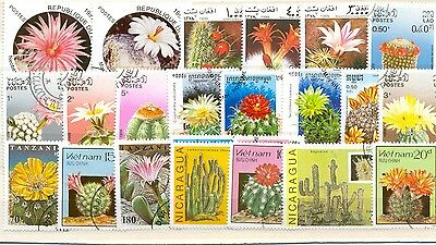 Cacti on stamps collection of 50 all different off paper