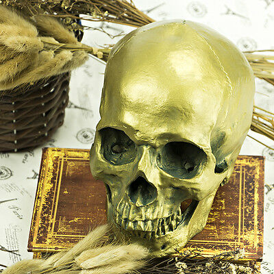 Halloween Antique Bronze 1:1 Life size Resin Human Head Skull Anatomical Model