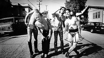 R.h.c.p. Red Hot Chili Peppers Navarro 8X10 Photo Poster Picture Decor Print 001
