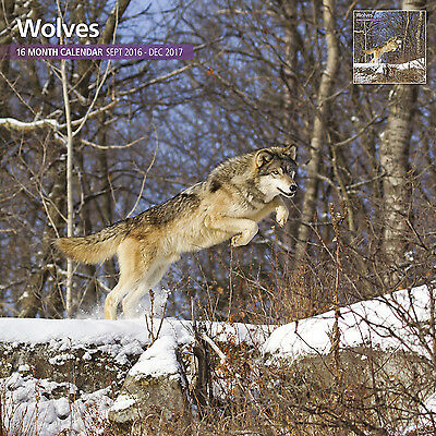 Wolves - 2017 16 Month Traditional Wall Calendar