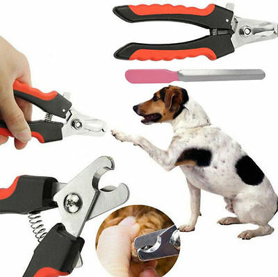 Stainless Steel Pro Nail Clipper Cutter Scissor For Pets Dog Cat Bird Guinea KY
