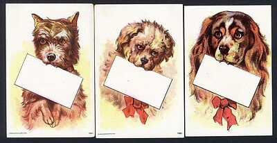 DOGS with Blank Cards in Mouth - 3 VICTORIAN CARDS for Names or Businesses 1880s