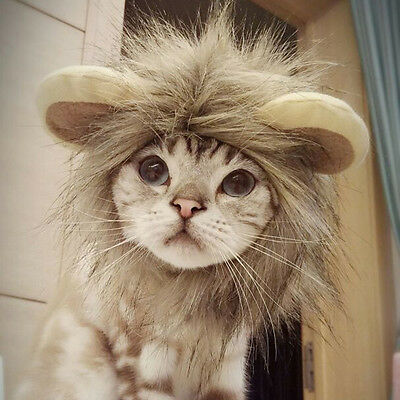 New Cute Pet Costume Lion Mane Wig Hats For Dog Cat Puppy Clothes Fancy Dress up