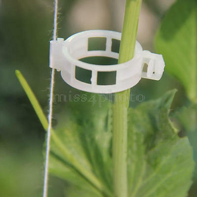 100Pcs Bulk Plant Vine Tomato Pepper Stem Clip Connect to Trellis Twine Plastic