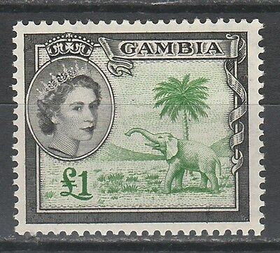 Gambia 1953 Qeii Elephant 1 Pound Mnh ** Top Value