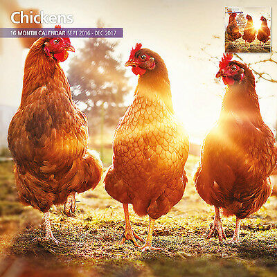 Chickens - 2017 16 Month Traditional Wall Calendar