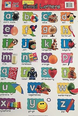 Jasart Laminated Wall Chart 495mmx740mm 0365080   **Lower Case**