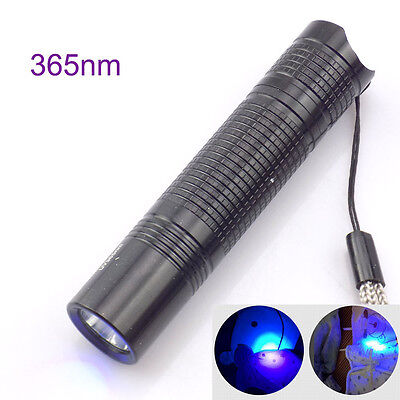 Led UV Flashlight Ultra Violet Torch 365nm AA Blacklight Inspection lamp light