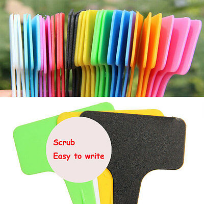 50/100X T-Shape Plastic Plant Seed Blank Labels Pot Marker Garden Stake Tags