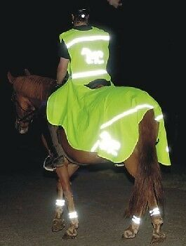 FLUORESCENT / REFLECTIVE  EXERCISE SHEET 6'0 -6'9 - By HKM-  RRP $29.95      ...