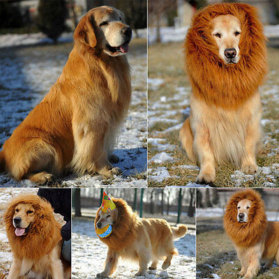 New Fun Lion Mane Wig For Pet Cat Dog Halloween Costume Festival Fancy Dress