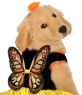 Rubies Costume Co Halloween Classics Collection Pet Costume, X-Large HDO CXX