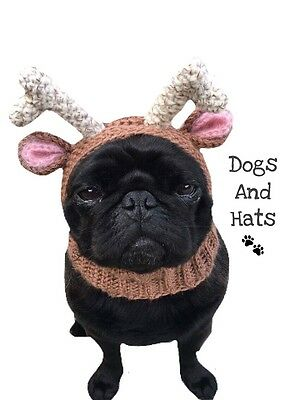 The Reindeer hat, snood, Hoody Apparel. Dog Hat. Xmas Costume. Pug, Terrier.....