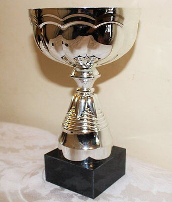 Silver Cup Trophy for Any Sport/Activity. FREE Engraving
