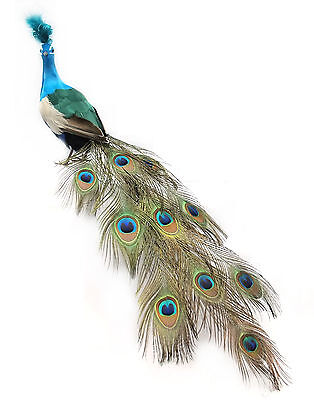 28 inch Long Feather PEACOCK Bird in NATURAL color, Blue/Green, Handmade