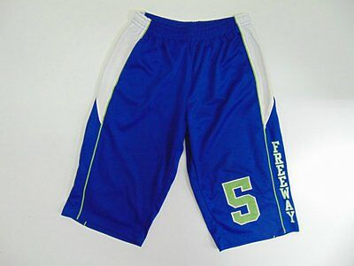 2000 2010 Identic blue Men's shorts basketball retro soccer vintage old L
