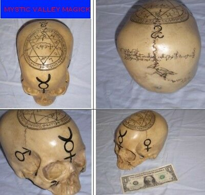 Mystic Skull- REALISTIC MARKINGS ! -Cold Cast Resin~ Feels Real ! ~Goth ~ Pagan