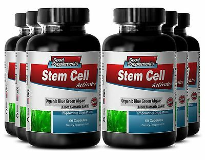 Spirulina Supplement - Stem Cell Activator 500mg - Boost Concentration Caps 6B