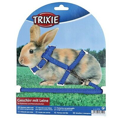 Rabbit harness and lead, various colours(6150)