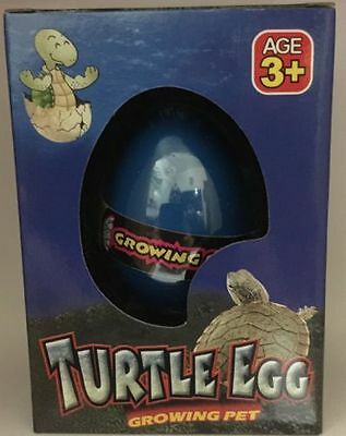 Magic Hatching Turtle EGG Growing In Water Toys Children Kids Gift Toy