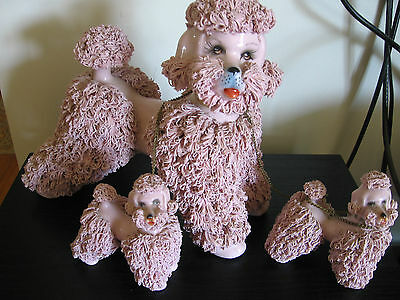 Large Pink Spaghetti Poodle and Chained Pups