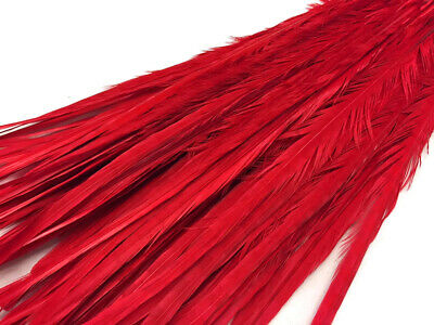 "50 Feathers 20-22"" Red Long Ringneck Pheasant Tail Wholesale Halloween Costume"