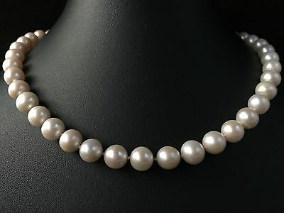 New 18Ct Gold Genuine 9Mm South Sea Pearl Necklace Natural Colour - Ha19