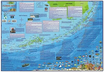 Florida Keys Adventure & Dive Guide Laminated Poster Franko Maps