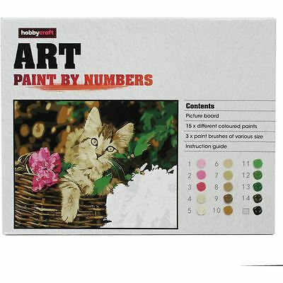 Hobbycraft Cat in Basket Paint By Numbers Kit Board Canvas 15 Colours Craft