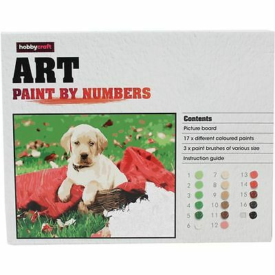 Hobbycraft Puppy Paint By Numbers Picture Board 17 Colours Craft Painting