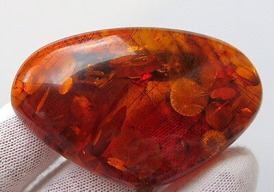 Vintage 47,95 Gm Polished Natural Genuine Baltic Amber Stone Brooch With Chain