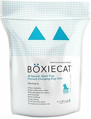 Boxiecat Premium Clumping Clay Cat Litter All Natural Scent Free Longer Lasting