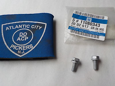 Gm 11080343 Water Pump - Pulley Bolt (Set Of 2) Part Factory Oem