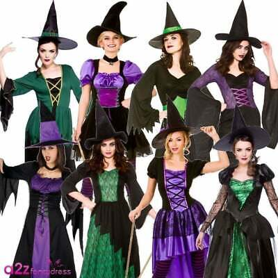 Ladies Adult Witch Halloween Witches Sorceress Hocus Pocus Fancy Dress Costume