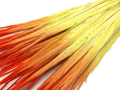 "50 Feathers 20-22"" Orange Yellow Ombre Long Ringneck Pheasant Tail Wholesale"
