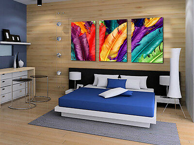 HD Canvas Print home decor wall art painting Picture- Feather 3PC Noframe#0151