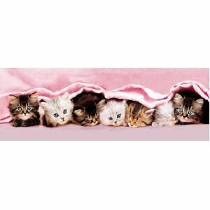 Kittens Under Blanket 1000 Piece Panorama Jigsaw Puzzle