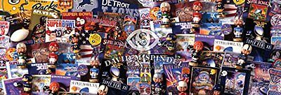 MasterPieces NFL Fanfest Collectibles Panoramic Jigsaw Puzzl