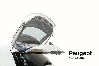 Automatische Heckklappe Peugeot 407 Coupe