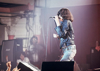 Art print POSTER / Canvas Joey Ramone of The Ramones on Stage