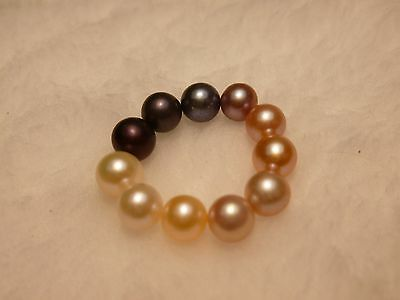 three  OYSTERS WITH PEARLS! MAKE ME AN OFFER