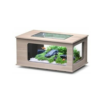 Table basse Aquarium LED 130X75 NOYER