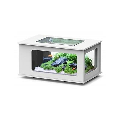 Table basse Aquarium LED 130X75 BLANC