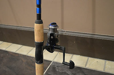 shakespeare rod and spinning reel combo