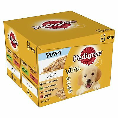 Pedigree  Puppy Pouches Meat Selection in Jelly 24 x 100 g - Pack of 2 (Total...