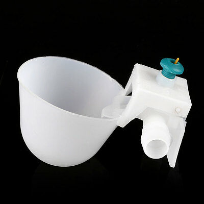 Chicken Chick Pigeon Bird Automatic Water Cup Feeder Dispenser Drinker