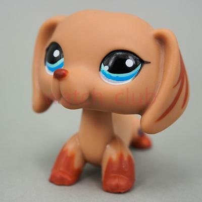 Littlest Pet Shop Collection Brown Dachshund Dog Blue Eyes Cute Loose