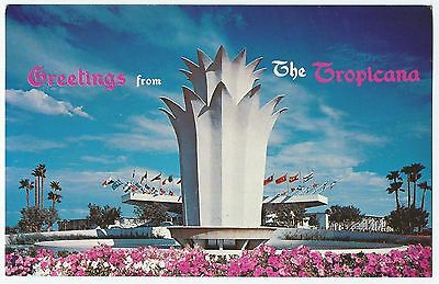 "NV LAS VEGAS Nevada 1960s GREETINGS FROM TROPICANA ""Chrome"" Postcard Unused VG+"